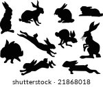 illustration with rabbit... | Shutterstock .eps vector #21868018