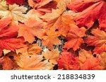 Background Group Autumn Orange...
