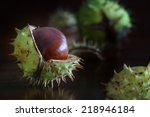 Chestnuts With Broken Shells O...