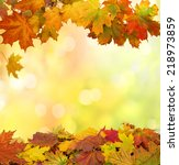 autumn  leaves | Shutterstock . vector #218973859