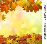 autumn  leaves   Shutterstock . vector #218973859