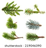 fir tree branch set  isolated... | Shutterstock . vector #219046390