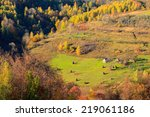 rural romanian landscape with... | Shutterstock . vector #219061186