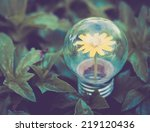 Light Bulb On Green Grass With...