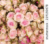 pink roses background of my... | Shutterstock . vector #219150478