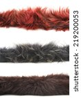 Strip Of Fur Isolated Over The...