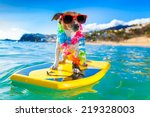 dog surfing on a surfboard... | Shutterstock . vector #219328003