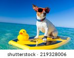dog surfing on a surfboard... | Shutterstock . vector #219328006