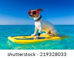 dog surfing on a surfboard... | Shutterstock . vector #219328033