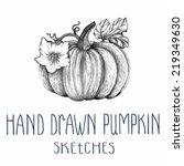 hand drawn pumpkin | Shutterstock .eps vector #219349630