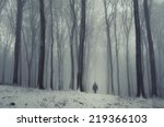 Fantasy Forest In Winter With...