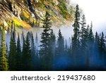 Fog And Pine Tree On Rugged...