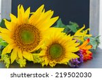 Bright Fall Sunflowers  With...