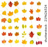 set collection from many... | Shutterstock . vector #219626524