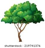illustration of a single tree   Shutterstock .eps vector #219741376