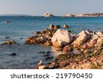 wild coast of the la maddalena... | Shutterstock . vector #219790450