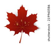 Red Maple Leaf With Drops Of...
