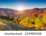 majestic colorful landscape... | Shutterstock . vector #219989338