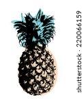 pineapple art pop art vector... | Shutterstock .eps vector #220066159