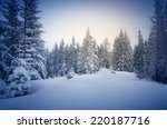 Winter In The Woods. New Year S ...