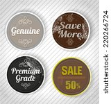 vector illustration of  badges... | Shutterstock .eps vector #220266724