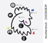 veterinary infographic | Shutterstock .eps vector #220283839