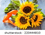 Three Flowers Of A Sunflower O...