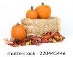 Studio Isolated Fall Pumpkins...