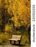 wooden bench sitting along... | Shutterstock . vector #220502320