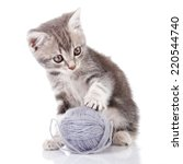 Stock photo funny gray kitten playing with gray ball on white background 220544740
