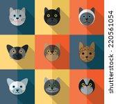 set of different species of... | Shutterstock .eps vector #220561054