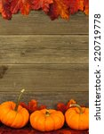 Vertical autumn leaves and pumpkin frame against aged wood - stock photo