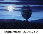 mountain summer landscape. few trees on hillside meadow at night in moon light - stock photo