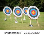 archery targets at various... | Shutterstock . vector #221102830