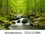Soft Water Of The Stream In Th...