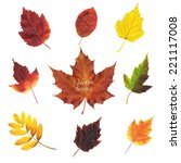 Autumn Leaves Set  Vector...