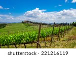 Vineyard Landscape In Tuscany  ...
