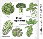set of cabbages   cauliflower ... | Shutterstock .eps vector #221244220