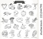 set of vegetables. vector hand... | Shutterstock .eps vector #221244790