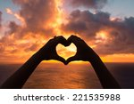 love shape hand silhouette | Shutterstock . vector #221535988
