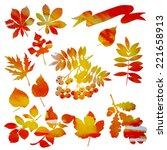 autumn set rowan berries ... | Shutterstock .eps vector #221658913