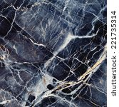 marble texture. black and blue... | Shutterstock . vector #221735314