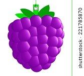 blackberry label  purple fruit... | Shutterstock . vector #221785870