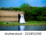 beautiful bridal couple on the... | Shutterstock . vector #221851330