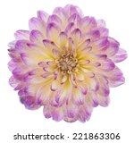 studio shot of pink colored... | Shutterstock . vector #221863306