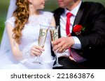 young bride and groom are... | Shutterstock . vector #221863876