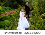bride and groom together on the ... | Shutterstock . vector #221864200