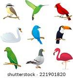 realistic bird species...   Shutterstock .eps vector #221901820