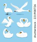 White Swan Wing Water Animal...