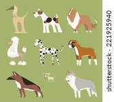 pure breed dog exhibition... | Shutterstock .eps vector #221925940